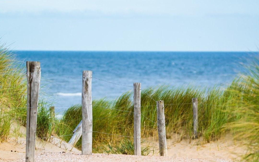 Blick über Dünen und Sand auf die Ostsee.